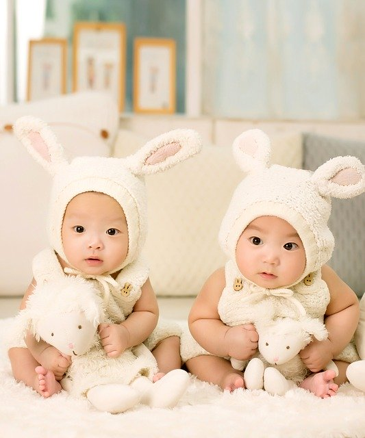 גידול תאומים