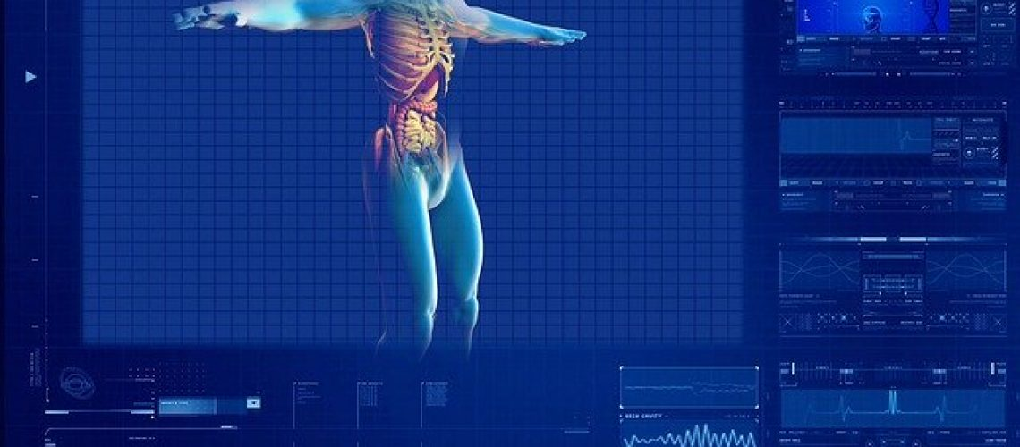 human-digestive-system-163714_640